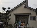 八代市  付帯建物 シリコン塗料サムネイル